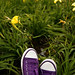 My purple all star for the first time at the park by flavita.valsani