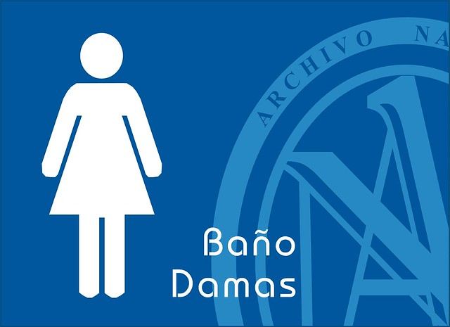 Logo del bano de damas - Imagui
