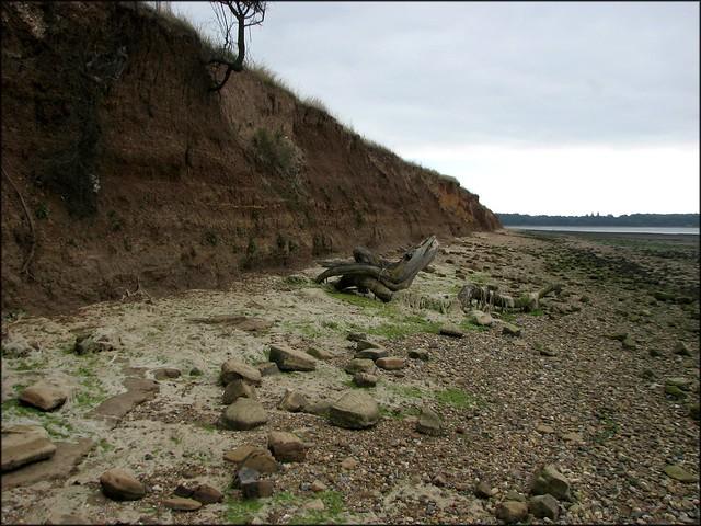 Cliffs on the Stour near Harkstead
