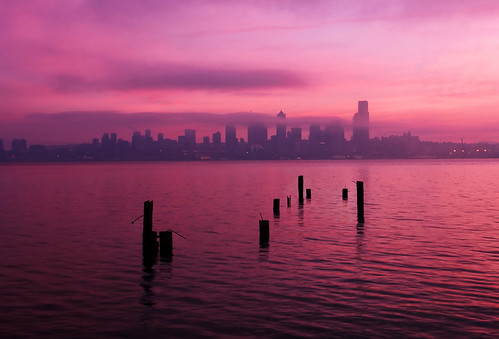 seattle pink fog sunrise washington cityscape foggy pugetsound pilings elliottbay soe davidhogan bachspicsgallery great123