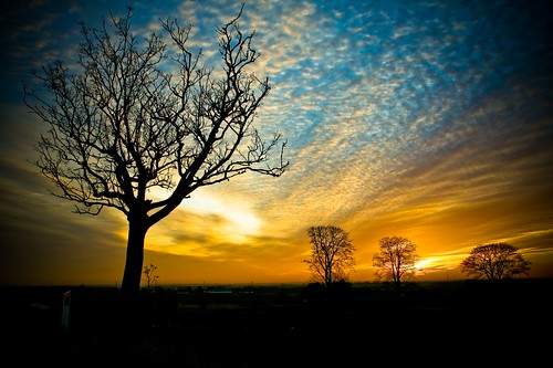 trees sunset clouds denmark silhouettes danmark orangebluesky canon400dvoetmann