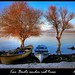 Two Boats under Red Trees by baby7