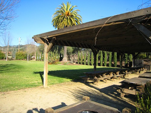 sebastiani, picnic, sonoma IMG_1373