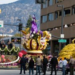 Pasadena Rose Parade 2008 31