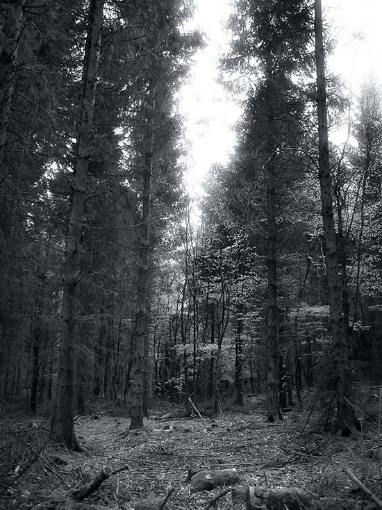 Photography - Passage by Nicholas M Vivian
