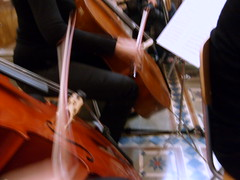 bowed string instrument, classical music, string instrument, musician, viol, viola, orchestra, cello, string instrument,