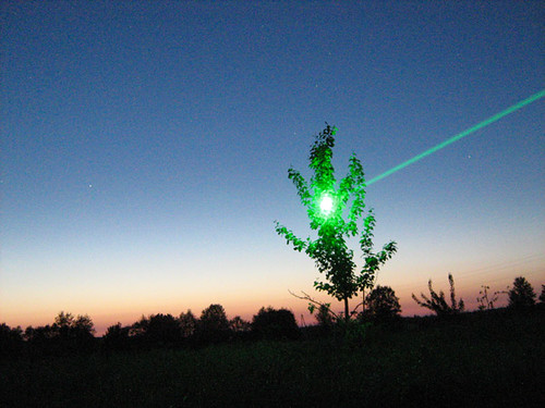 Green laser VS small tree