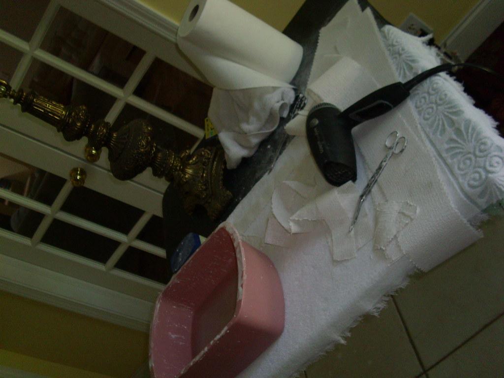 Tulsa Craft Mafia Breast Casting Supplies | August 2007