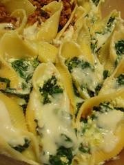 pappardelle(0.0), produce(0.0), carbonara(0.0), conchiglie(1.0), pasta(1.0), leaf vegetable(1.0), food(1.0), dish(1.0), cuisine(1.0),