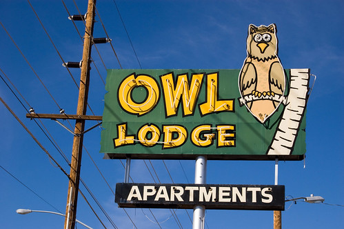 Owl Lodge