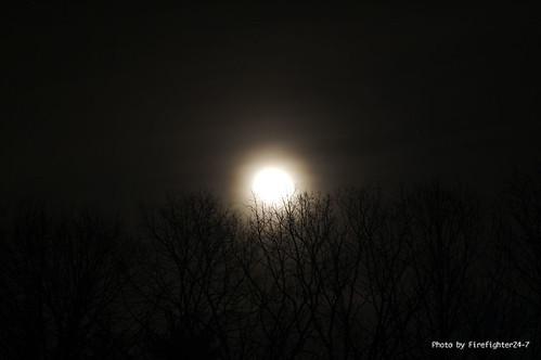 trees moon unitedstates maryland woodbine fabulous picturesque smörgåsbord firefighter247