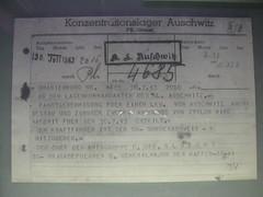 receipt(0.0), document(1.0),