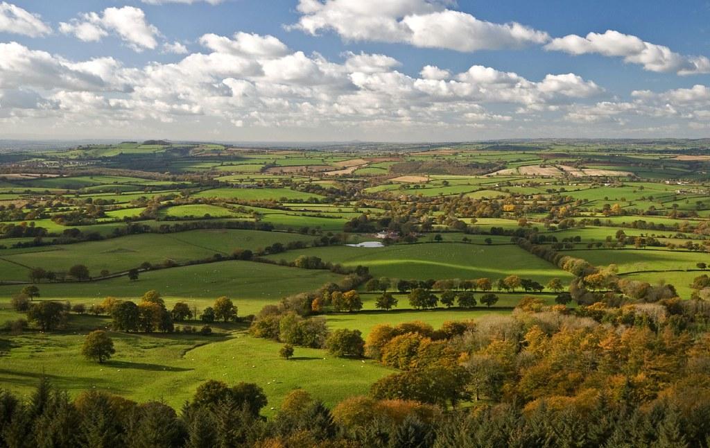 Somerset in Autumn