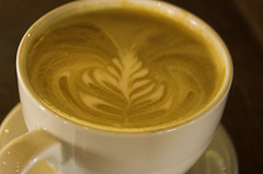 tea(0.0), flat white(1.0), cup(1.0), cortado(1.0), coffee milk(1.0), caf㩠au lait(1.0), coffee(1.0), coffee cup(1.0), caff㨠macchiato(1.0), drink(1.0), latte(1.0), caffeine(1.0),