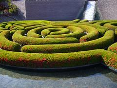 outdoor structure(0.0), soil(0.0), grass(0.0), lawn(0.0), flooring(0.0), shrub(1.0), flower(1.0), labyrinth(1.0), green(1.0),