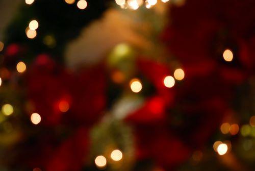 christmas lights (ii)