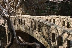 6b. Alum Rock history