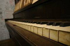 celesta, piano, musical keyboard, keyboard, spinet, player piano,