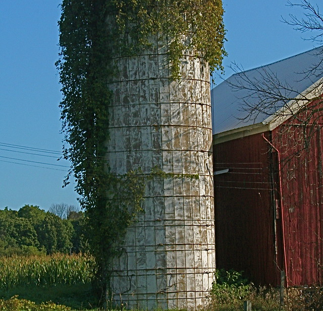 Silo with Vines