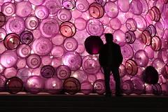 'Purple Background'
