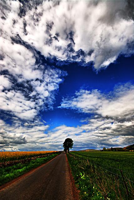 Vibrant Road