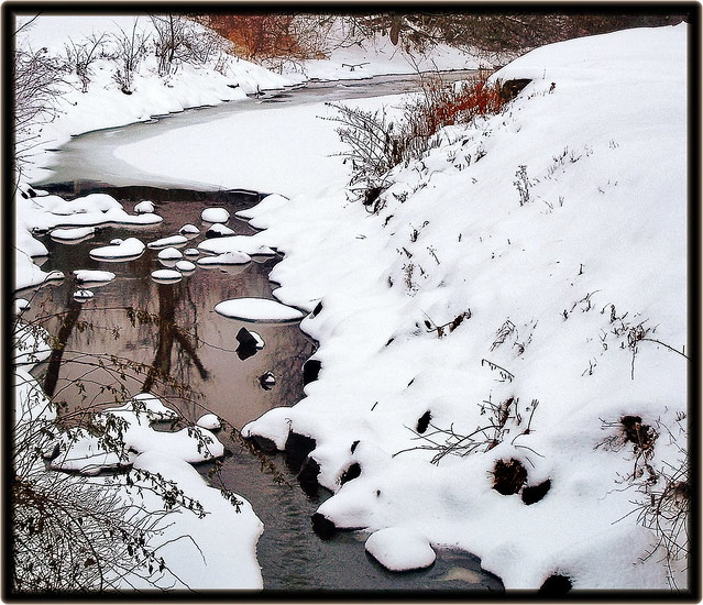 Cold Brook Reflections