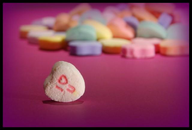 Day 45/366.....Happy Valentine's Day!