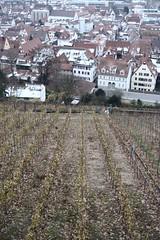 Stuttgart - Esslingen - Paisaje