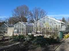 TV Garden - Kings Heath Park - greenhouses