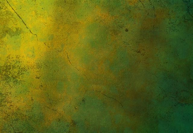 free desktop wallpaper flickr photo sharing