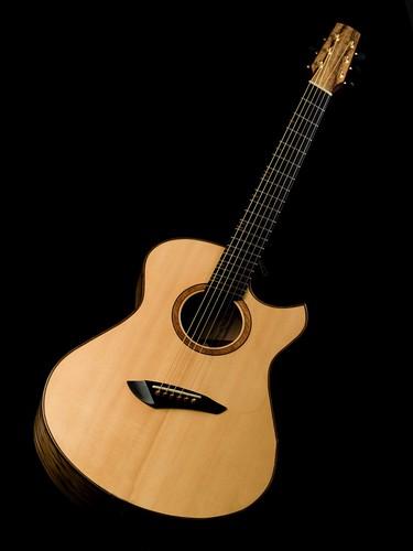 fan frets the acoustic guitar forum. Black Bedroom Furniture Sets. Home Design Ideas