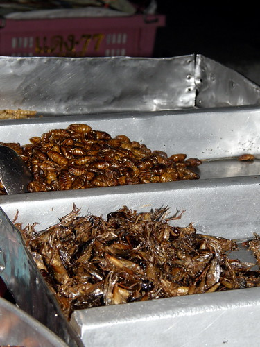 Bugs for sale at a Bangkok market