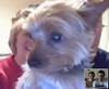 Webcam with Izzy