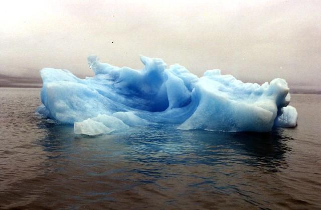 Everyone's Iceberg