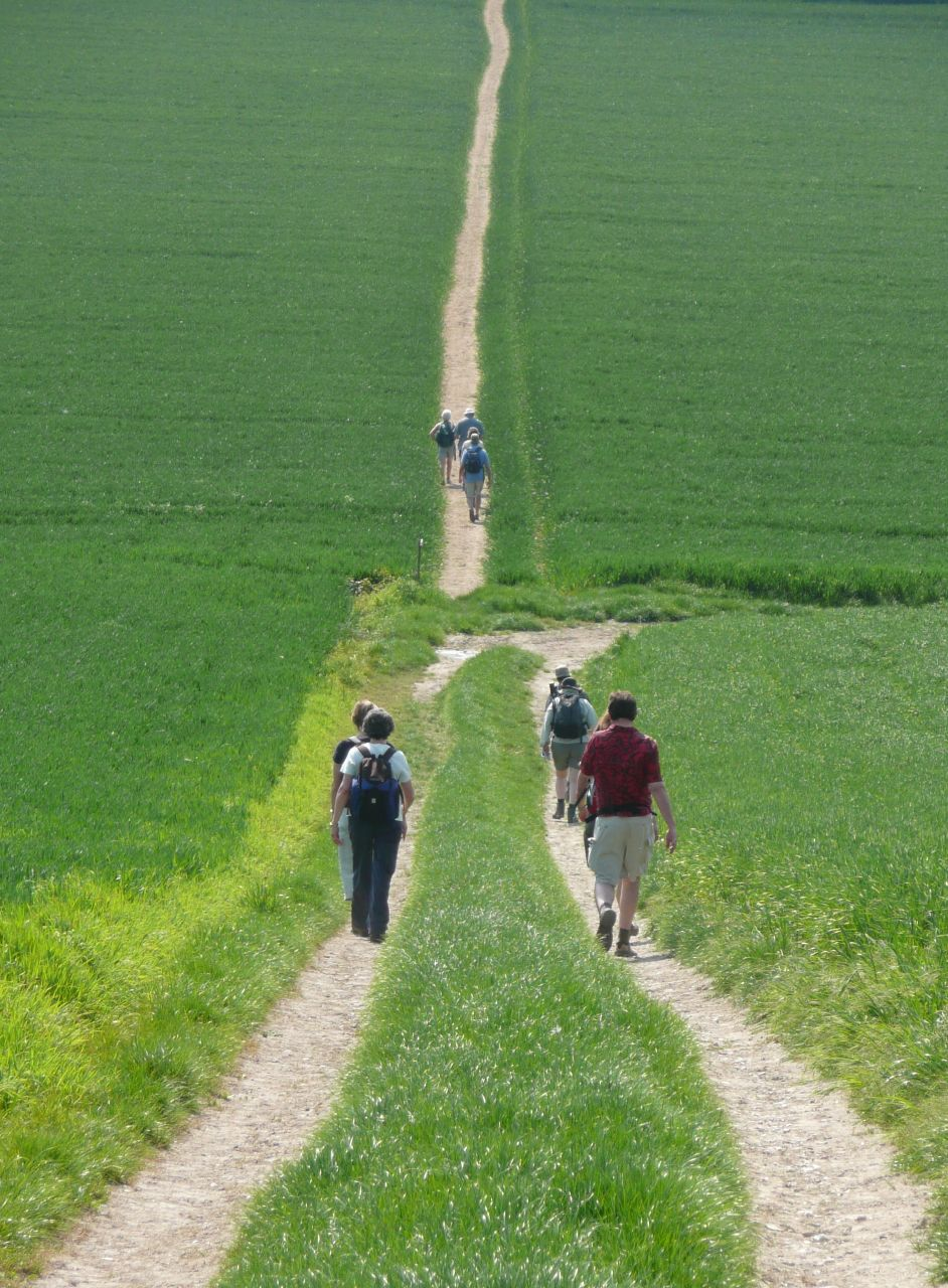 Book 1, Walk 53, Wye Circular Forked, 10 May '08.