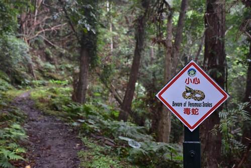 瓦拉米步道-小心毒蛇