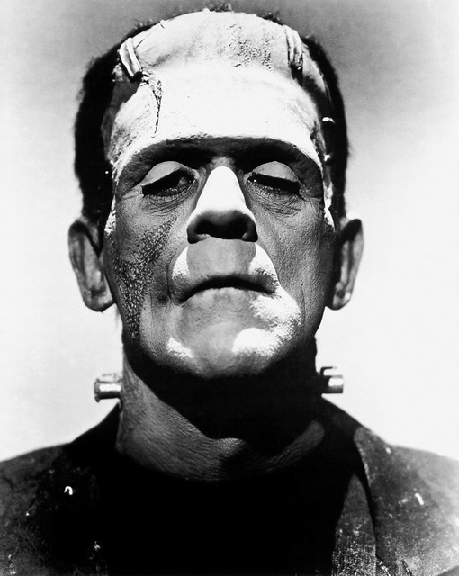 Frankenstein S Monster Nature Comforting Him