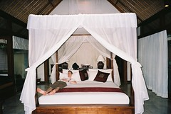 furniture, mosquito net, four poster, room, bed, interior design,