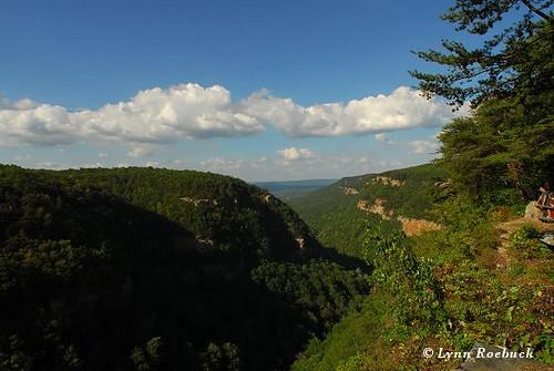 nature georgia tennessee tenn gorge geology cloudlandcanyonstatepark