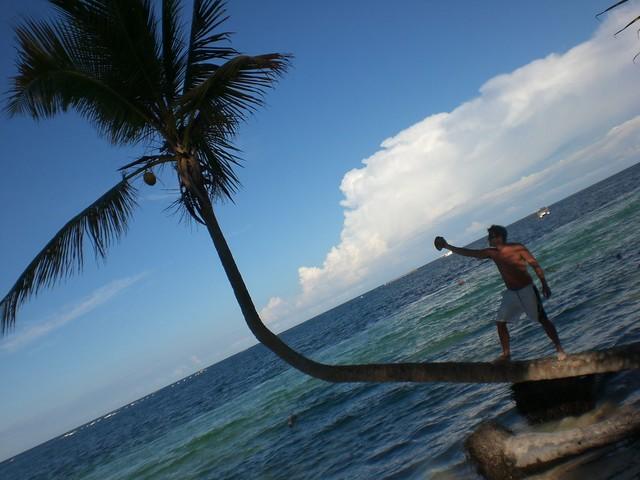 Quitando las cenas en los hoteles donde hay un  Punta Cana - 2510669551 5dd74c8916 z - Punta Cana, paraíso terrenal donde nace el sol