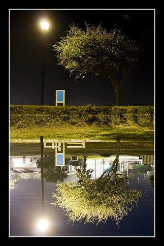 park reflection pond nightshot florida streetlamp symmetry neptunebeach jarboe betterthangood