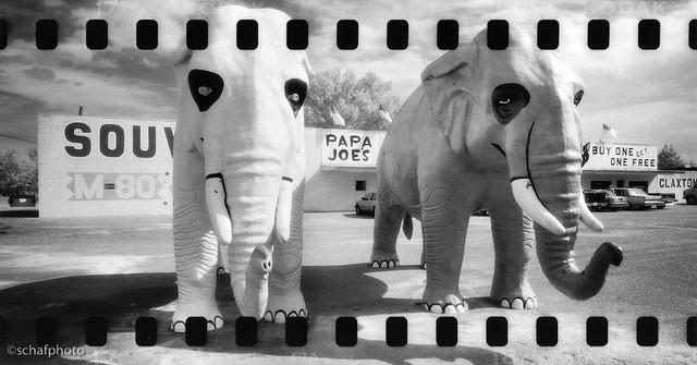 Papa Joe's, Hardeeville SC. 1999