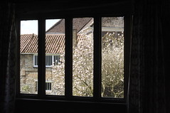 2008-04-08 and 09 (Methwold Old Vicarage) - 145