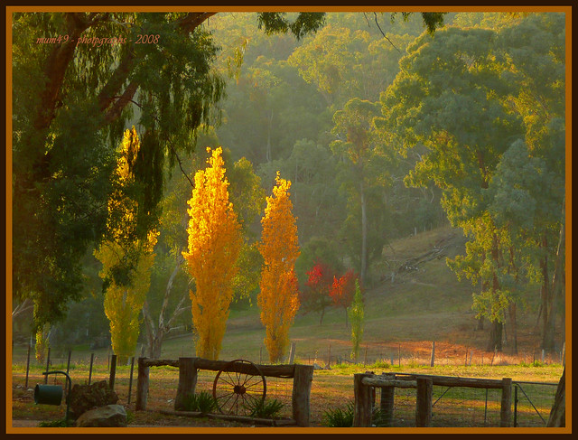 autumn in the valley...