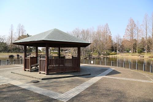庄和総合公園4