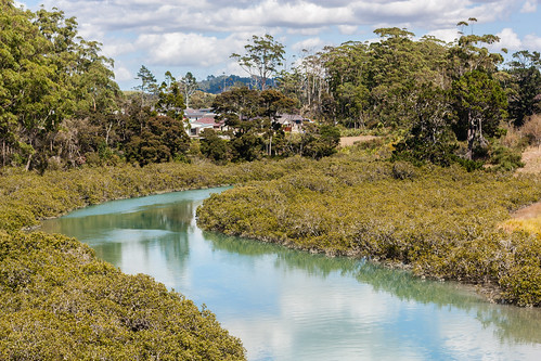 Orewa estuary