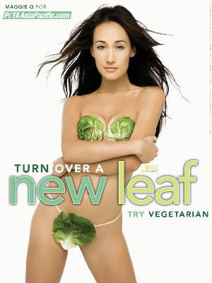 Maggie S Vegetarian Cafe