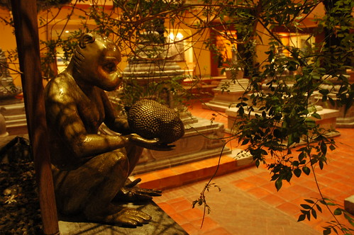 Monkey holding a fruit, Tibetan Buddhist stupas, garden, hotel, Bodha, Kathmandu, Nepal by Wonderlane