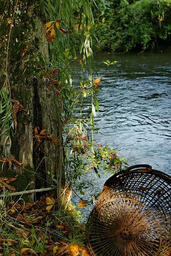 Fall at the River