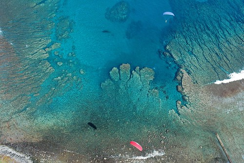 Paragliding in Réunion Island: view of coral reef off Saint Leu